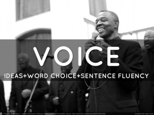 This is the nifty opening image to The Word Factory's Elements of Voice slide deck