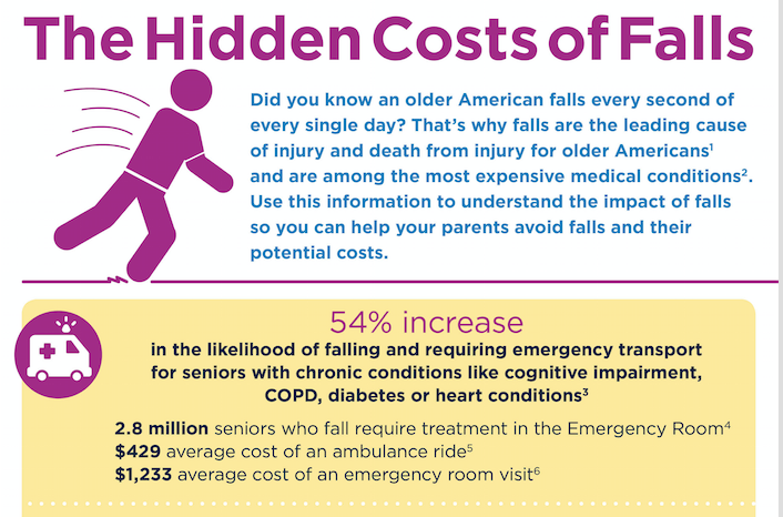 An infographic showing costs related to falls created by The Word Factory for Philips Lifeline