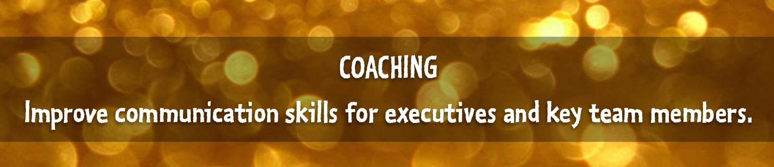 Slick slider graphic for Margot Lester's executive and leadership writing coaching page